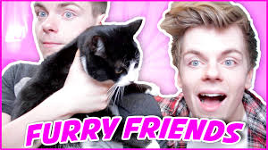 Furry friend tag questions